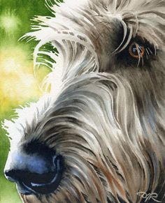 IRISH WOLFHOUND Dog Signed Art Print by Watercolor by k9artgallery, $12.50