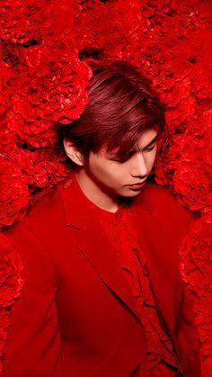 Daniel K, Prince Daniel, K Idol, Korean Music, Colorful Drawings, 3 In One, Is 11, Model Photos, Korean Singer