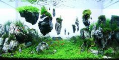 画像 : とても水槽とは思えない…… 世界水草レイアウトコンテスト受賞作品集 【空想庭園】 - NAVER まとめ