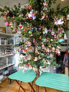House of Seasons: oh denneboom......... Kralingen