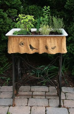 Sink and Sewing Base = Herb Garden