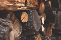 Seasoned Logs near me - Dronfield logs tell us The Importance of Drying wood logs for your winter wood stockpile Wood Logs, Raw Wood, Winter Pictures, Free Pictures, Metal Band Saw, Wood Detail, Woodland Creatures, Free Stock Photos, Hair