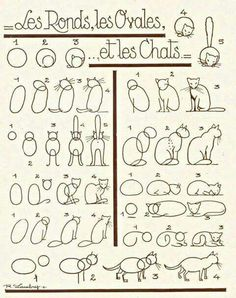 Apprendre à dessiner un chat... ...