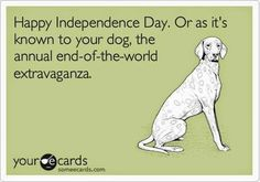 Do your dogs hate fireworks too?