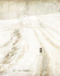 all who wander... by jamie heiden, via Flickr