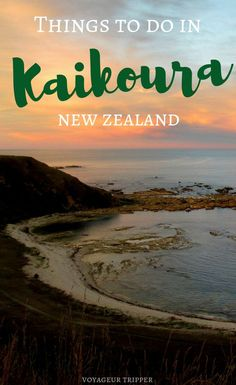 Are you traveling to New Zealand? Discover why you should visit Kaikoura on New Zealand's South Island. And enjoy your time there with these top things to do in Kaikoura. Brisbane, Melbourne, Sydney, New Zealand Itinerary, New Zealand Travel Guide, Visit Australia, Australia Travel, Travel Guides, Travel Tips