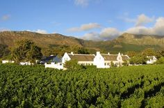 Sojourn at Steenberg Outside of Cape Town: Africa's Best-Loved Hotel
