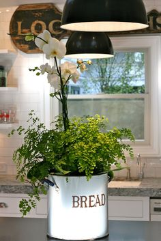 The bread enamel pot arrangement. the Polished Pebble: Kitchen design flaws: simple solutions Kitchen Plants, Cottage Kitchens, Country Kitchens, Polished Pebble, Vintage Planters, Rose Cottage, Cottage Style, Farmhouse Chic, Beautiful Kitchens