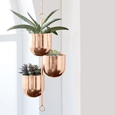 Hanging Metal Planters Add some polish to your plants with our Hanging Metal Planter. With its easy-to-hang, sleek metal pots, it doubles as standalone art or as a stylish way to bring some greenery to your home. Hanging Plants Outdoor, Indoor Plant Wall, Hanging Plant Wall, Best Indoor Plants, Hanging Planters, Wall Planters, Metal Planters, Garden Planters, Succulent Planters