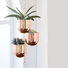 diy geometric hanging planter Hanging Plants Outdoor, Indoor Plant Wall, Hanging Plant Wall, Best Indoor Plants, Hanging Planters, Wall Planters, Metal Planters, Garden Planters, Succulent Planters