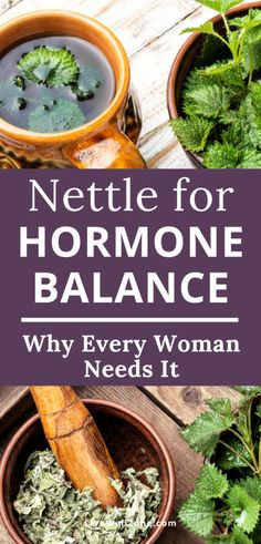 Using stinging nettle for hormones can help hormonal acne, hair loss, weight loss and more. Learn the benefits + how to make nettle tea. Be Natural, Natural Healing, Natural Health Remedies, Herbal Remedies, Cold Remedies, Nettle Tea Benefits, Hormone Imbalance Symptoms, Oil For Hair Loss, Hormone Balancing