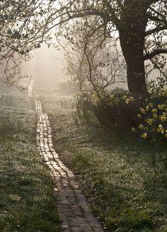 ~~Orchard Path at Sunrise ~ Great Dixter, Sussex, UK by Carol Casselden | International Garden Photographer Of The Year winner 2013~~