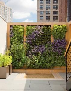 Bounded by a teak frame, lush plants thrive above the children's sandbox. Herbs and other edibles, such as strawberries, are planted just within the children's reach.