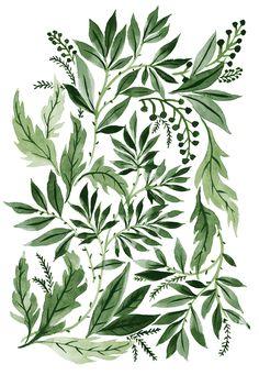 foliage_T.jpg