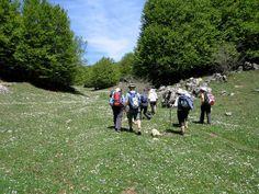 Walking up to Mont Cervo in Sicily