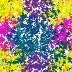 Leaf_colors