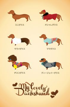 My Lovely Dachshund by Kathrine Ampeso, via Behance