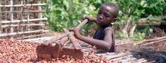 子供の奴隷を使っているチョコレートブランド7社 |世界の裏側ニュース