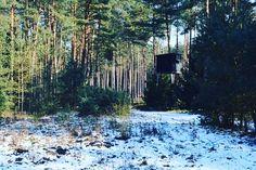 Waidmannsheil aus dem Revier von @huntergram_de - liegt bei euch auch noch Schnee im Revier? #jagdprinz #hunting #hunter #hunt #jäger #jagen #chasse #caza #jagd #jakt #sau #schwein #frischling #wildboar #revier #huntingground #passion #huntingpassion #pasion #waidmannsheil #jagdindeutschland #jagdinniedersachsen #jagdistleidenschaft