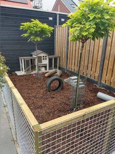 Rabbit Hutch Plans, Outdoor Rabbit Hutch, Indoor Rabbit, Rabbit Hutches, Chicken Garden, Backyard Chicken Coops, Backyard Ducks, Chickens Backyard, Pet Bunny Rabbits
