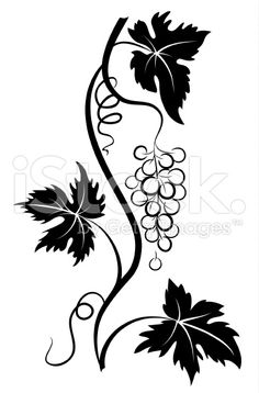 Decorative Stylized Grapevine with Grape bunch and Three Leaves ...