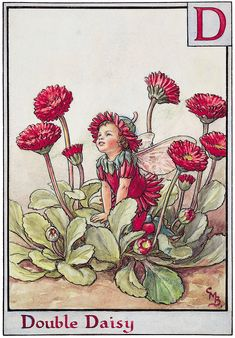 Loss Tips and Delphiniums youre too tall for me Isnt there a little flower I can choose for D In the smallest flowerbed Double Daisy lifts his head With a smile to g. Vintage Fairies, Vintage Flowers, Flower Fairies Books, Fairy Drawings, Cicely Mary Barker, Butterfly Fairy, Fantasy Illustration, Fairy Art, Vintage Prints