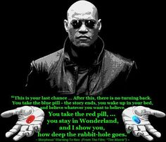 'Red pill' or 'blue pill'. most times I want both. In the movie 'Matrix' Morpheus asks Neo to choose true reality and freedom or virtual reality and ignorance. Matrix, Mlp, Fluttershy, Red Pill Blue Pill, Movie Lines, Richard Branson, You Mad, My Little Pony, Red And Blue