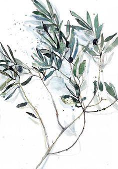 Olive branch watercolor painting / Ksenia Topaz