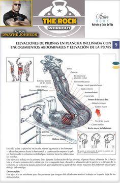 Elevaciones de piernas en plancha inclinada con encogimiento abdominales y elevaciones de la pelvis At Home Gym, Gym Workouts, Abs, Exercise, Gym House, Body Builders, The Rock, Core, Training