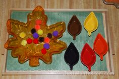 Practical Life – My Montessori Cultural Curriculum Montessori Trays, Montessori Toddler, Montessori Activities, Fun Activities, Montessori Practical Life, Kids Board, Preschool Ideas, Fine Motor, Sorting