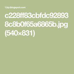 c228ff83cbfdc928938c8b0f65a6865b.jpg (540×831)