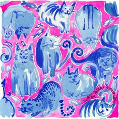 It's Friday. Never mind... just KITTEN. #lilly5x5
