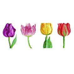 Tulips, from DMC Club.