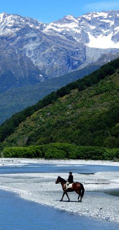 Stunning Glenorchy, South Island, New Zealand New Zealand Houses, New Zealand Landscape, New Zealand South Island, New Zealand Travel, Fauna, Places To See, Beautiful Places, Scenery, Around The Worlds