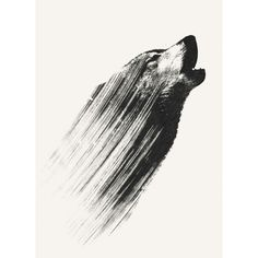 #art #artwork #dog #wolf
