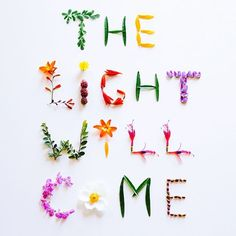 The Light Will Come in Flowers by Sophia Hsin - Flower, Typography - Stocksy United Flower Words, Flower Art, Love Flowers, Beautiful Flowers, Instagram Accounts To Follow, Cool House Designs, Beautiful Words, Design Elements, Floral Arrangements