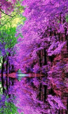 It's a beautiful world!