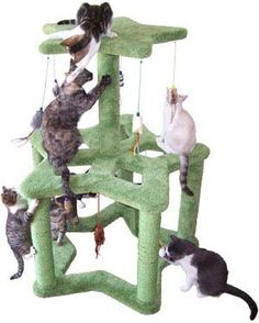 Cozy Cat Furniture Offers the Ultimate in Cat Condos | Catster