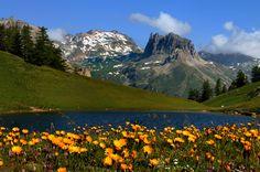 Valle Stretta by Comune_Bardonecchia, via Flickr