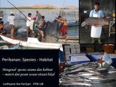 Kul_04 PDP-Fisheries SpeciesHabitat1