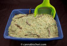 Kushy Kitter Litter Cake - Halloween Marijuana Recipes - Powered by @cannnabischeri