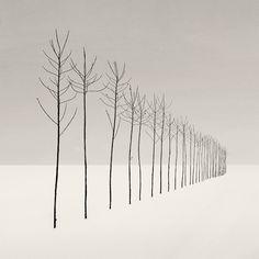 Slenders by Nilgun Kara