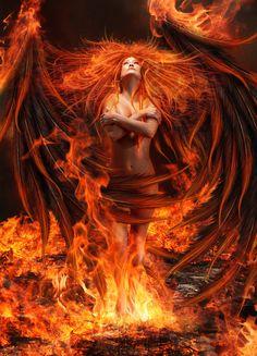 Phoenix - What is Risen by Thy-Darkest-Hour.deviantart.com on @deviantART