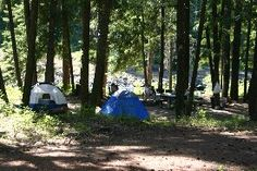 Sawmill Flat Campground, Tourist information about Washington State Campgrounds.  As a child, my Mom used to take us camping at this campground, boy we used to have a blast!