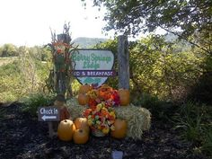 Berry Springs Lodge Fall Decorations