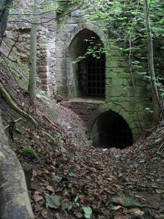 The ruins of Yester Castle in East Lothian, Scotland.  The two doors/windows lead to 'Goblin Ha', a vaulted underground chamber reputedly used for necromancy.