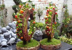 herfst bloemstuk - krans met physalis, hedera, blad of schors en mos op een schijf hout-boomstam