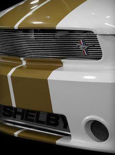 263 best shelby super snake gt500 images snakes mustang cool cars rh pinterest com