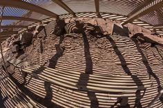 Benches and Shadows Photo by Angela Stanton -- National Geographic Your Shot
