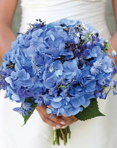 Love the Hydrangeas wedding bouquet(NOTE: hydrangeas are not super durable and need tons of water, maybe just do them as center pieces) Hydrangea Bouquet Wedding, Bridal Bouquet Blue, Bride Bouquets, Floral Wedding, Wedding Flowers, Wedding Blue, Trendy Wedding, Blue Bridal, Blue Wedding Bouquets
